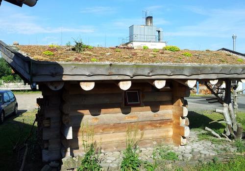 Die Blockhausbauer - Halbstammsauna mit Gründach