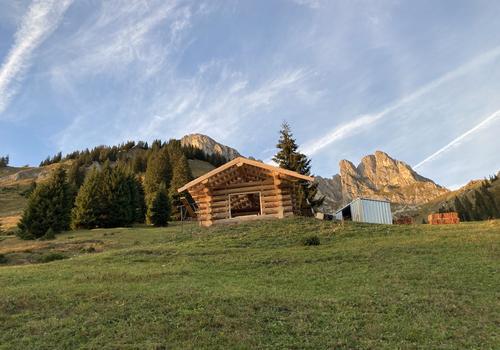 Blockhaus als Heustadl in Österreich