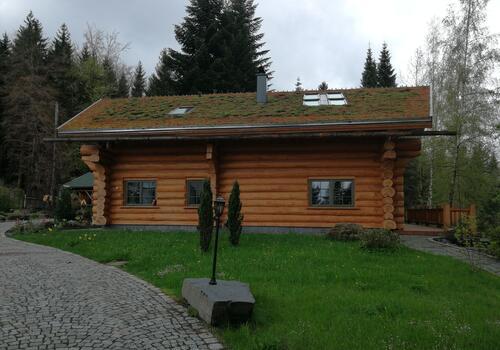 Gründach auf einem Blockhaus